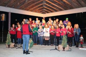 Christmas in the park - adult choir