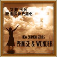 Praise and Wonder